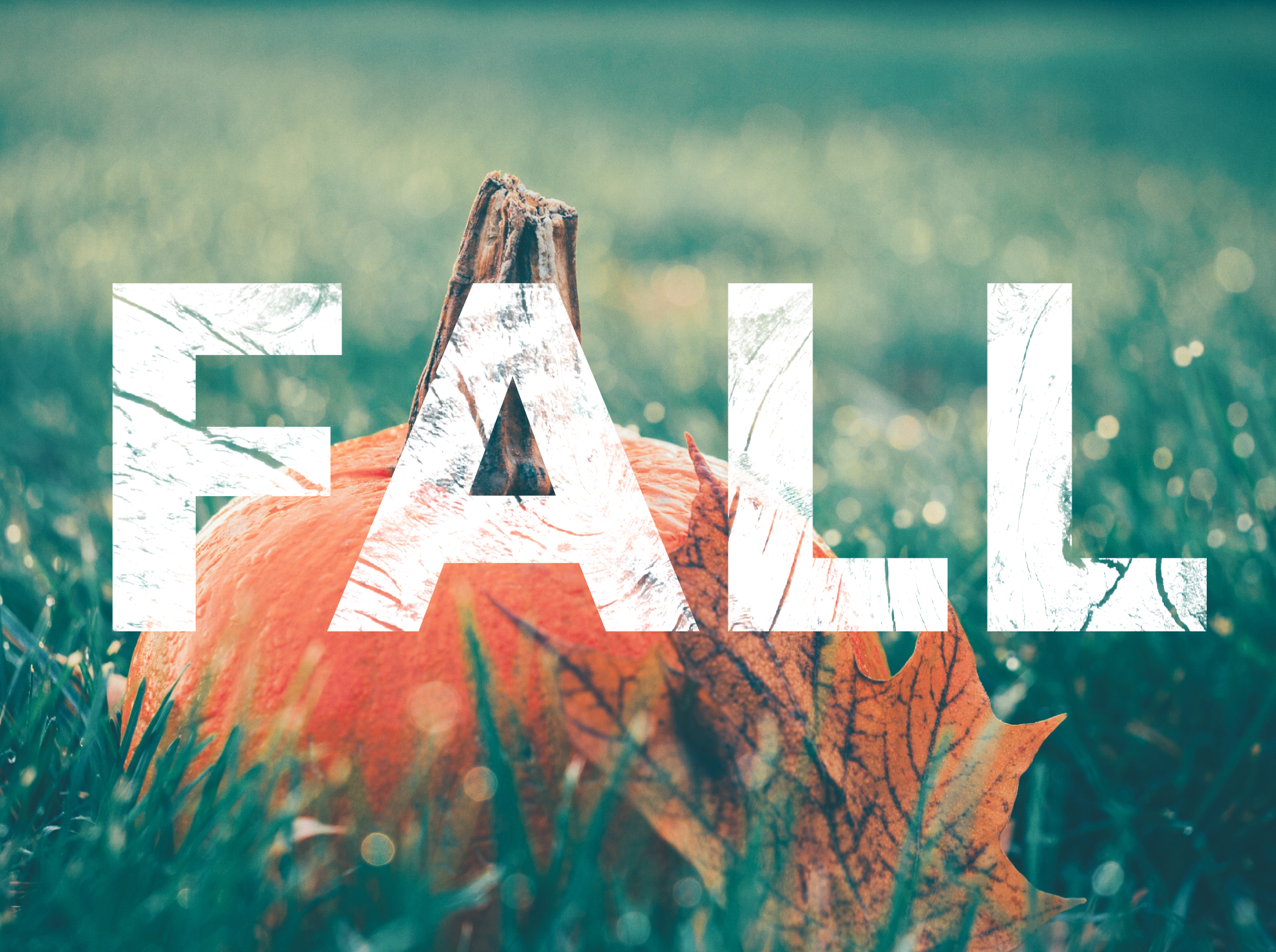 seasons blog:fall image